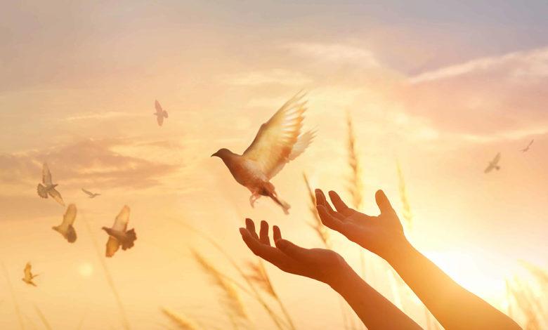 Photo of Yanına Getirme Duası